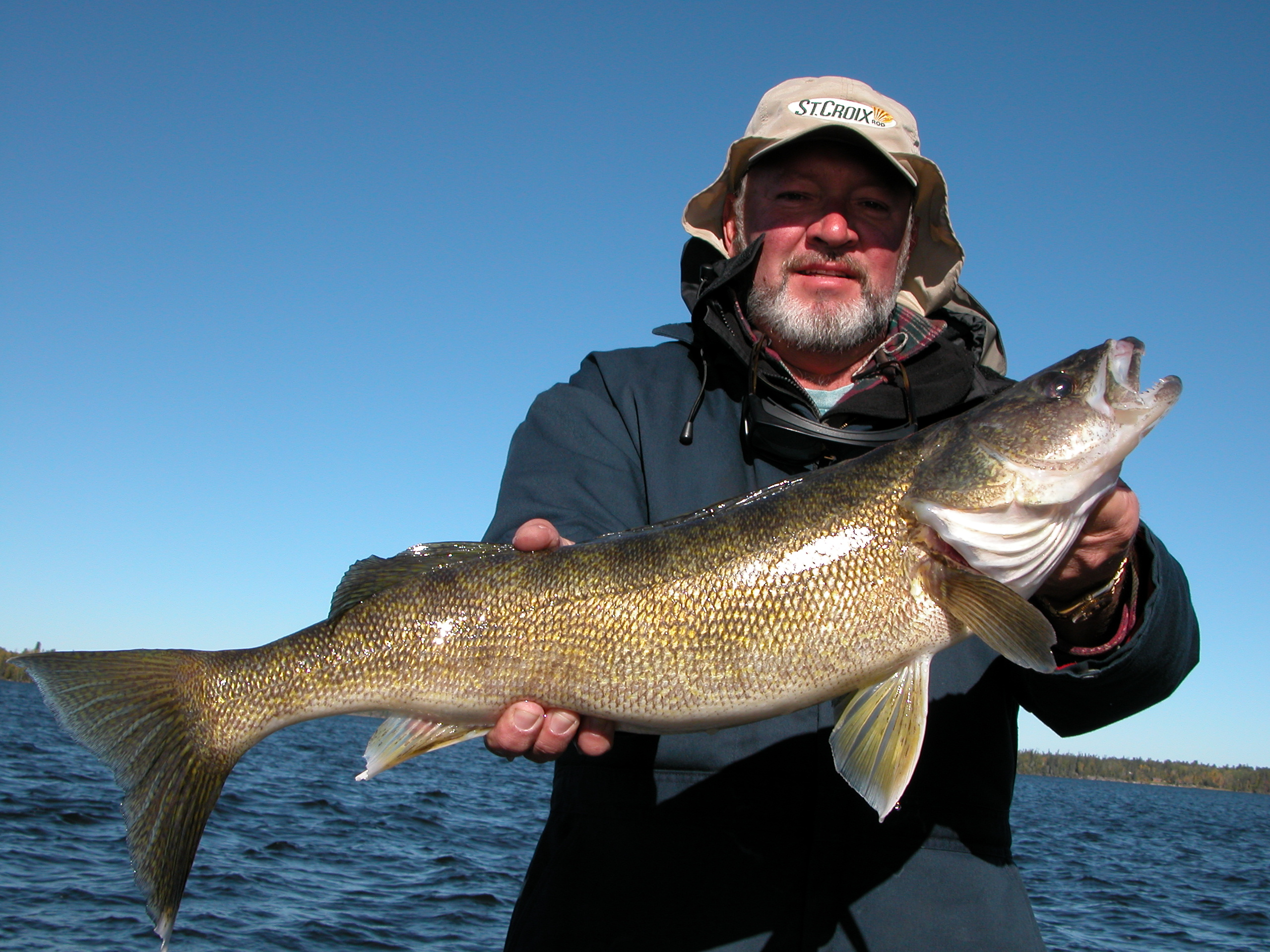 Nice walleye Lac Seul Lake caught at northwinds canadian outfitters