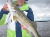 Nice walleye Lac Seul caught at northwinds canadian outfitters