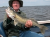 Nice walleye Cedar Lake caught at northwinds canadian outfitters