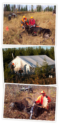 Great Moose Hunting at Northwinds Outfitters